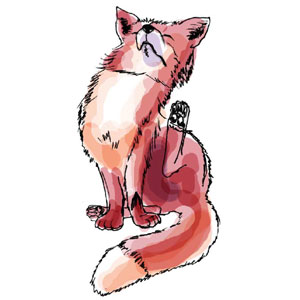 Fuchs, Illustrationen